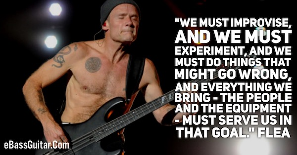 Flea Bass Guitar Lessons